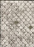 Roberto Cavalli Home No.6 Wallpaper RC17108 By Emiliana For Colemans